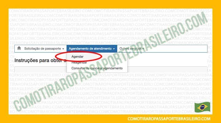 A Imagem mostra a opção agendar família para tirar o passaporte do Brasil